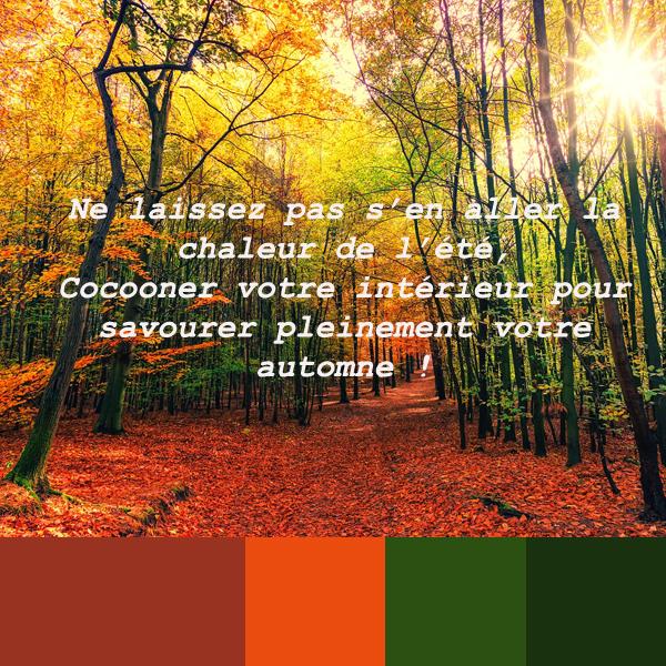 La couleur, par Nadia Duffieux, Architecte d'intérieur et Décoratrice à Montpellier 34